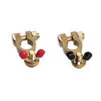 Brass Battery Terminal Wingnut Marine (Pair)