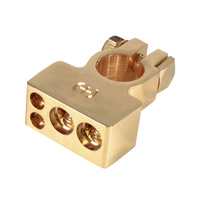 4 Wire Gold Negative Battery Terminal