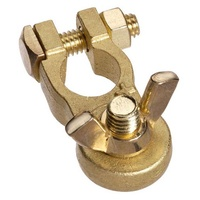 Brass Battery Terminal Wingnut Marine (Pos)