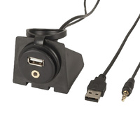 USB and 3.5mm Aux Audio Extension Panel and Mount