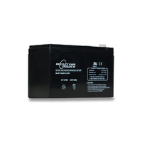 Neuton Power 12v 7ahr Standard Alarm System Battery