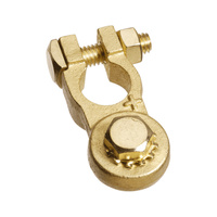 Heavy Duty M8 Bolt Brass Battery Terminal - Positive